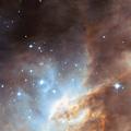 star cloud LMC